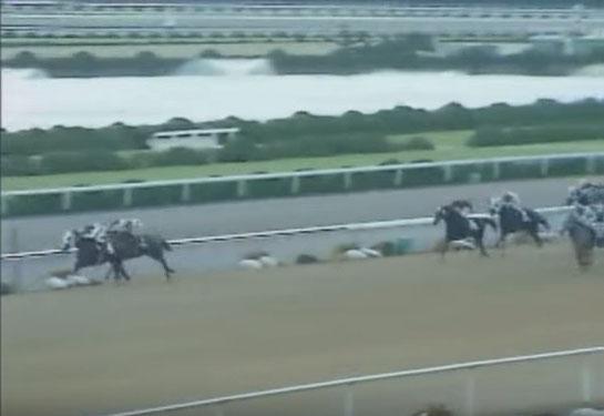 京都競馬場 マイルチャンピオンシップ オグリキャップ バンブーメモリー