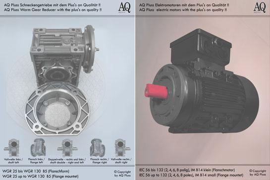 Schneckengetriebe mit E Motor 400 V B5