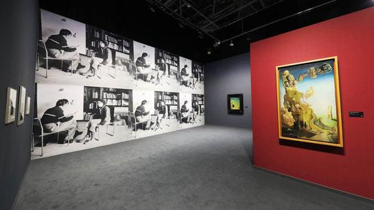 Сальвадор Дали. Выставка в Монако