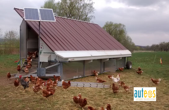 Off grid solution for a henhouse. The solar system provides the energy for necessary technical functions i. e.  automatic door control and feed supply.
