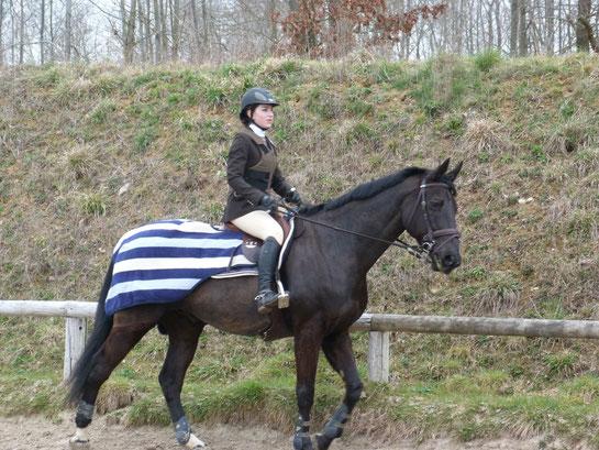 A cheval en concours