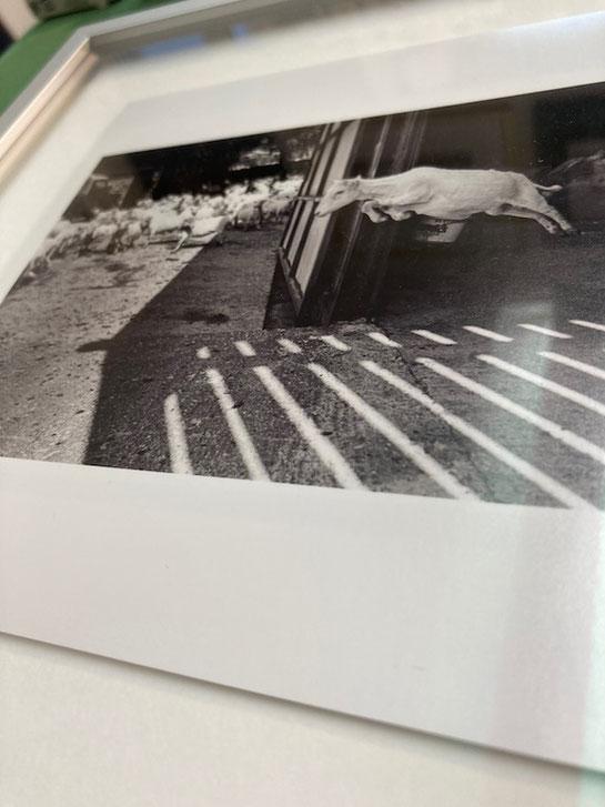 Foto schwebend im Alukastenrahmen eingelegt. Doppelter Passepartout.
