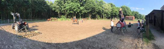 Auch bei warmen Temperaturen trainiert der RV Altlünen gemeinsam in der Sonne: Die Reiter üben für das nächste Turnier und die 4. Voltigruppe trainiert fleißig für das Finale um den Deutschen Voltigier- Pokal der L- Gruppen