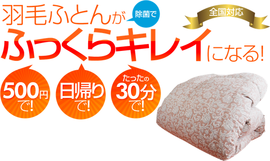 ふんわり除菌 (羽毛ふとん ふっくらキレイ)/ スリープキューブ和多屋