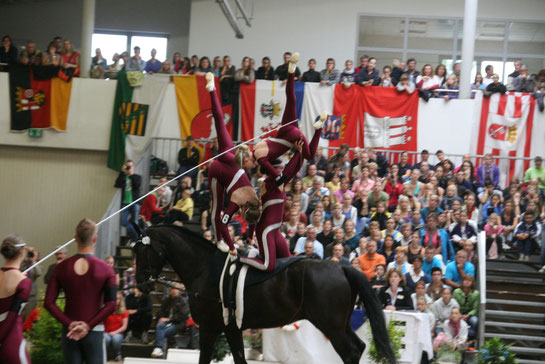 Deutsche Voltigiermeisterschaft 2011 in Elmshorn (nahe Hamburg)