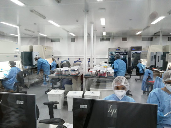 Technicians collect samples for the production of PCR tests in the COVID-19 Diagnostic Center of the Fondation Oswaldo Cruz in Rio de Janeiro inaugurated in August 2020 (Source: authors, February 2021).