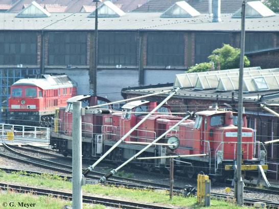 294 862-8 steht am 06. Juli 2013 inmitten von vermutl. 290 525-5 (hinten) und einer Lok der BR 362. 233 510-7 ist im Hintergrund zu sehen (Halle/S.)