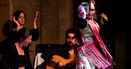 Лучшие фламенко шоу в Барселоне - Палау Далмасес