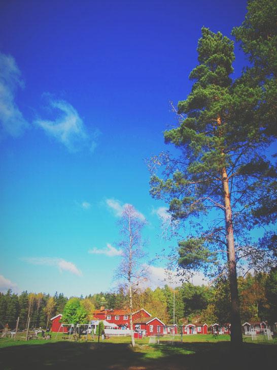 parc suède lac cabane rouge