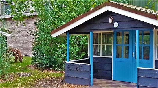 Een vakantiehuisje met een pony ter beschikking, Henk Bemboom's formule waarmee hij economische en sociale ontwikkeling naar Slagharen en omgeving wist te halen...