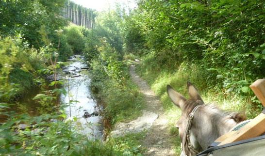 """Unterwegs auf dem """"Eisleck-Trail"""". Hier: """"la vallée des fées"""" - das Tal der Feeen"""