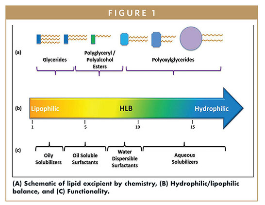 introduction to lipid-based drug delivery systems,