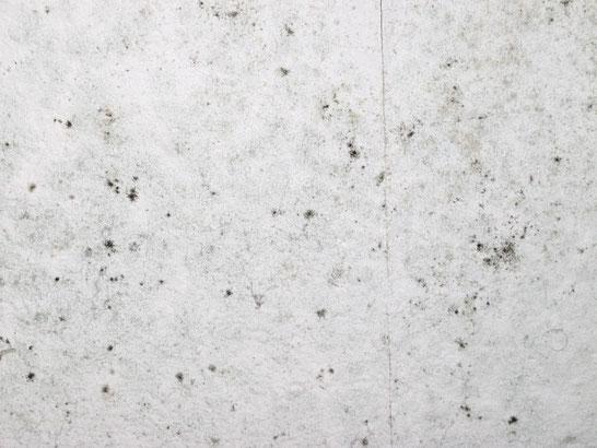 Verdächtige Stelle an einer Wand: Handelt es sich um Schimmel oder um eine Verschmutzung?