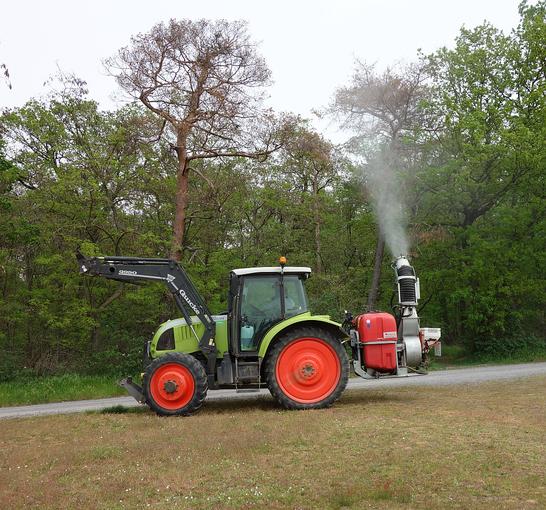 Bild: SBK-Zuber im Einsatz gegen den Eichenprozessionsspinner