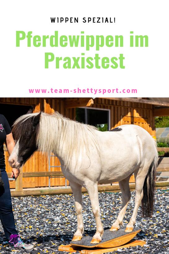 Pferdewippen im Praxistest! Warum Wippen für Pferde sinnvoll ist und worauf man bei einer Wippe achten sollte.