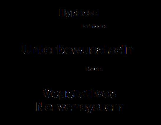 Hypnose und Nervensystem - Mein Hypnosestudio Freital nähe Dresden