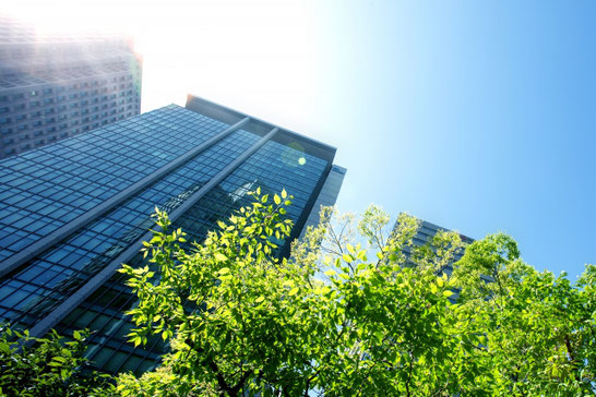 青空にむかってそびえたつビル。新緑の木々。