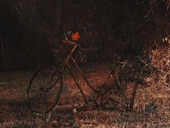 La bicyclette de Paulette