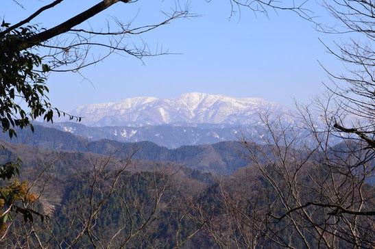 手前のどっしりした山稜が部子山、左奥の平坦に見える山稜が銀杏峰です