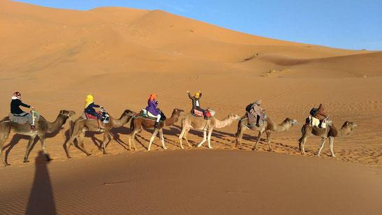 モロッコ/サハラ砂漠「キャラバン隊」