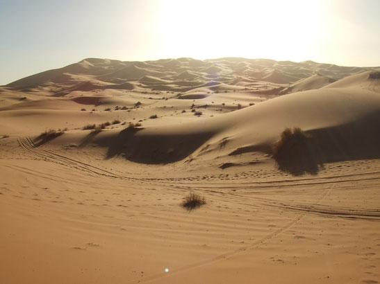 360度どこを見渡しても奥行きのある「砂漠」の景色