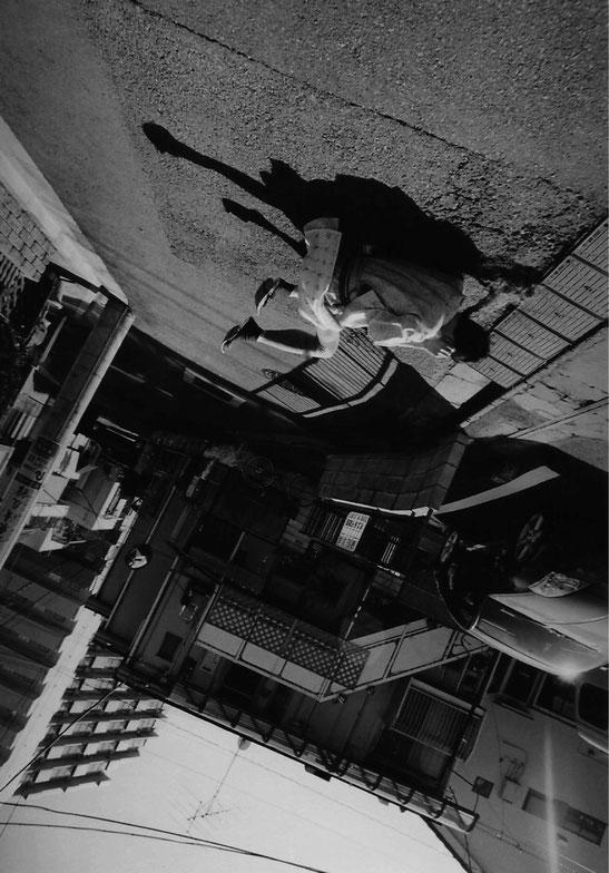 「PARALLEL/反転する皮膚」/2012