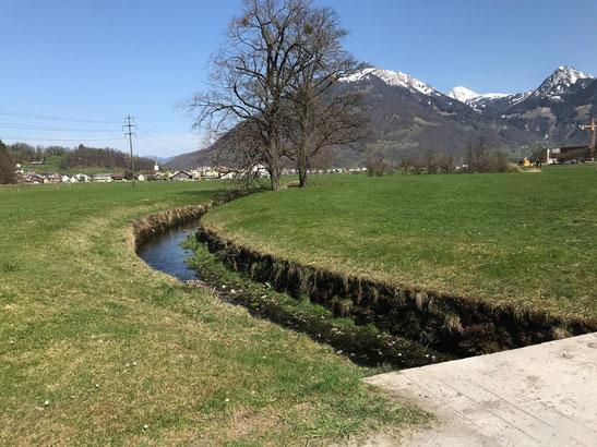 Rauti beim Rautifeld, unmittelbar vor der Einmündung in den Mühlebach, den dann ihren Namen annimmt.