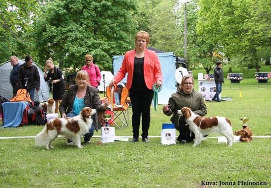 Finse Spaniel Club - 1 juni 2014