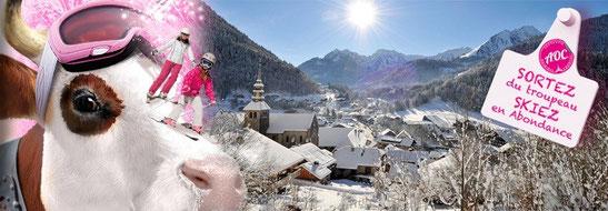 taxi,gare,transport,abondance,excursion,portes,du,soleil,thonon,ski,abbaye,village