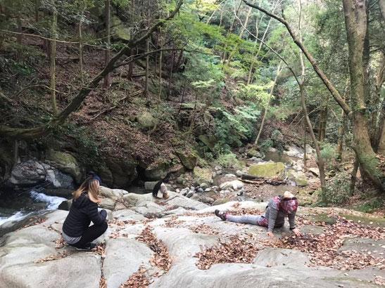 山の瞑想会in大山は、自然の中でくつろぐ時間を大切にします