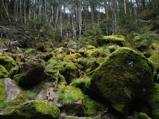 茶臼山登山 地獄谷探訪ツアー