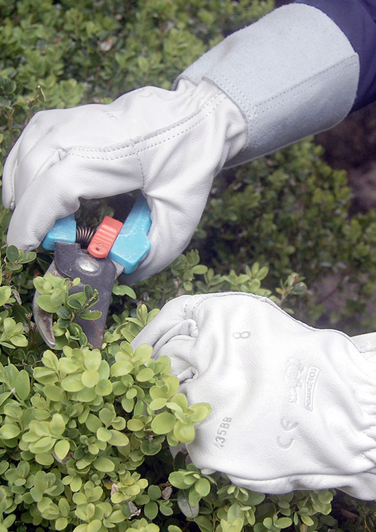 gants de jardinage cuir made in france