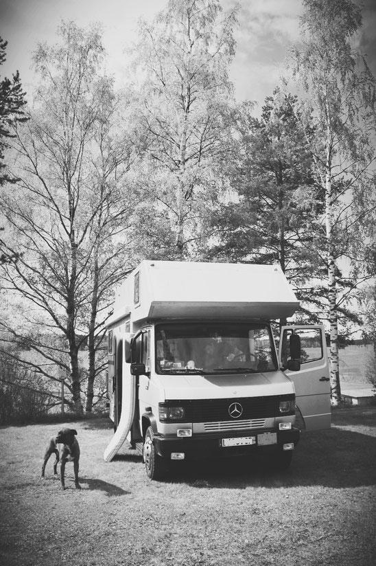 bigousteppes finlande camion mercedes