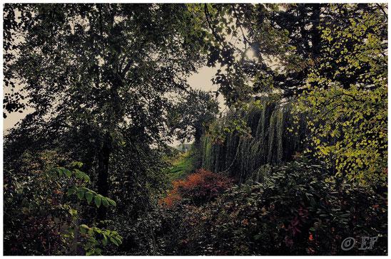 Naturzauber bei Hillensberg
