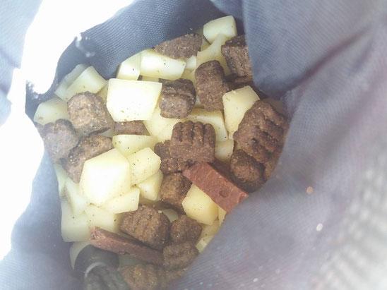 Indispensable pour une bonne journée : Gruyère, friandise Nutrivet et lamelle de viande séchée