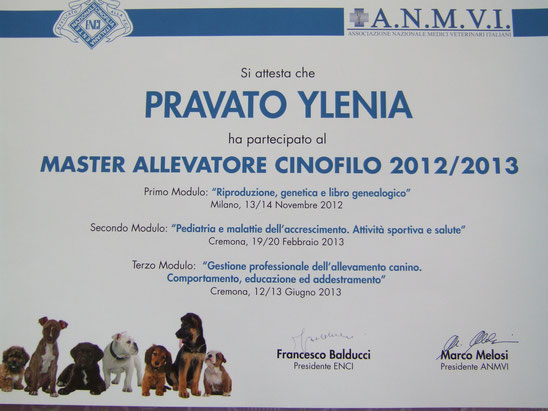 ecco il diploma finale !!!