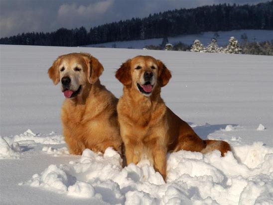 Janis und Uni bei ihrer Schneehochzeit