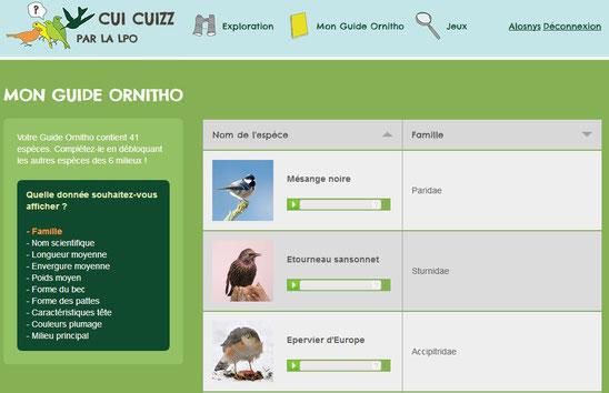 Cui-cuizz un jeu pédagogique pour reconnaitres les oiseaux 2