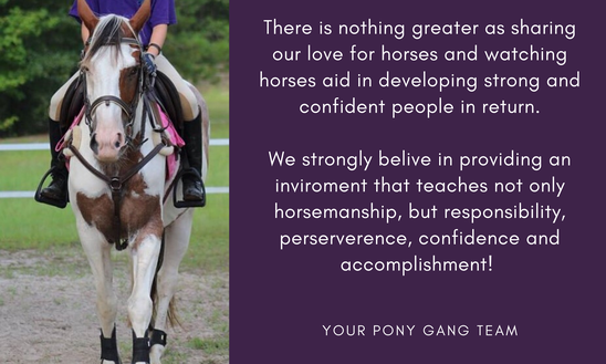 If you are looking for the best Equestrian barn family in Camden, SC than stop by at Pony Gang Equestrian Services!