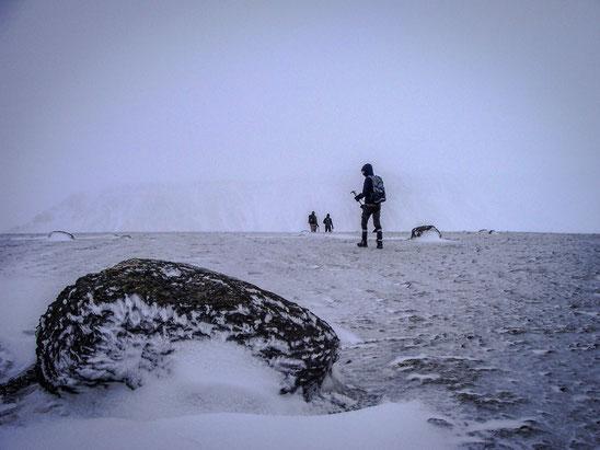 Mikis, Yannis, Guillaume and me returning after an increasing storm at Mt. Esja. // Mikis, Yannis, Guillaume und ich drehen nach stärker werdendem Sturm um.