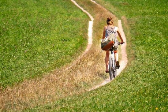 Radwandern auf Pellworm