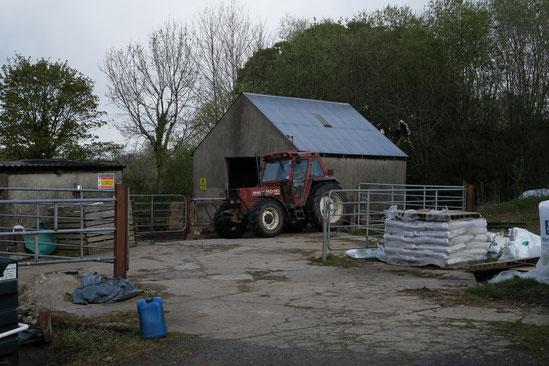アイルランド 農家