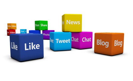 Reed House Media Agencia de Publicidad Online