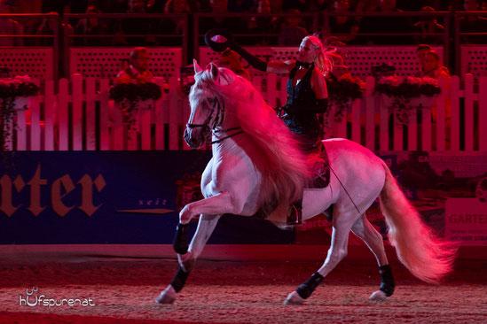 Pferde-Eventfotografie
