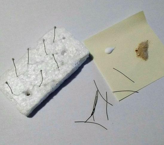 Miniatur-Weihnachtsstern basteln