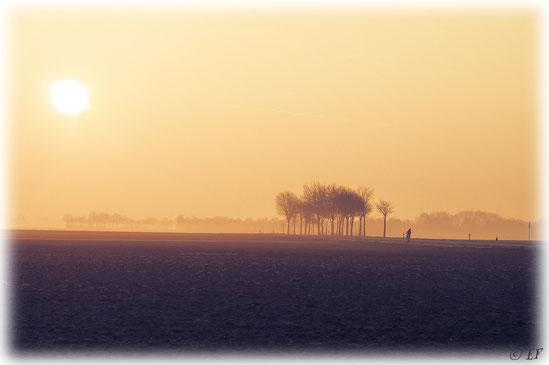 Ein Wintermorgen