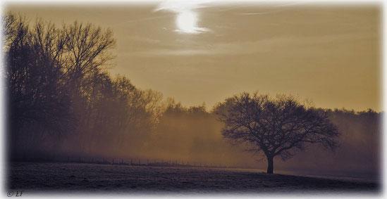 Ein stiller Morgen