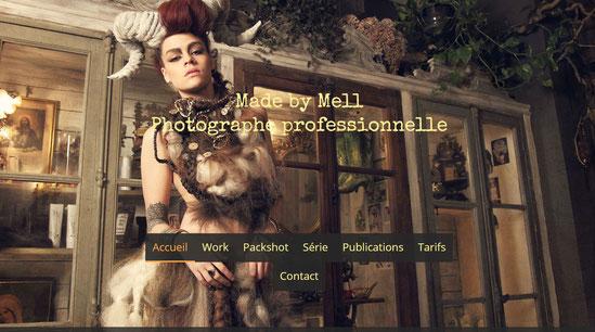 site internet dédié aux photos pour les professionnels toulouse, albi