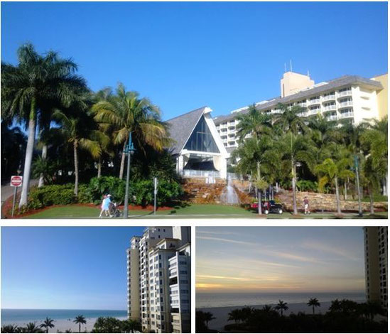 Marco Island Marriott Beach Resort(学会会場)