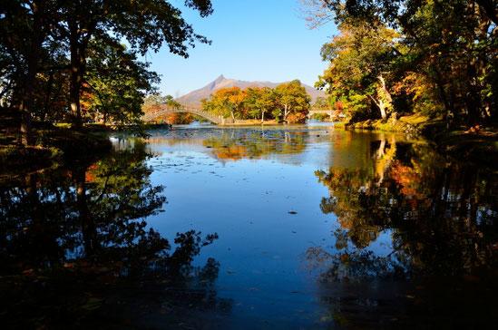 秋の大沼湖畔、美しく色づいております